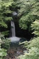 小泉の滝2s-.jpg