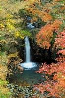 小泉の滝s-.jpg